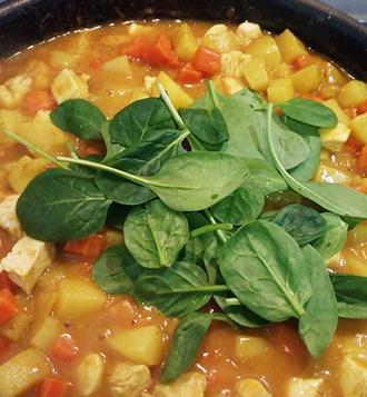 pousses épinard légumes mijotés